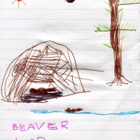 2016-08-01 beaver lodge drawing