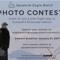 photo-contest-poster-extended-deadline1