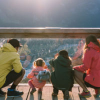 From Sea to Sky Gondola for Sustaining Partner page banner